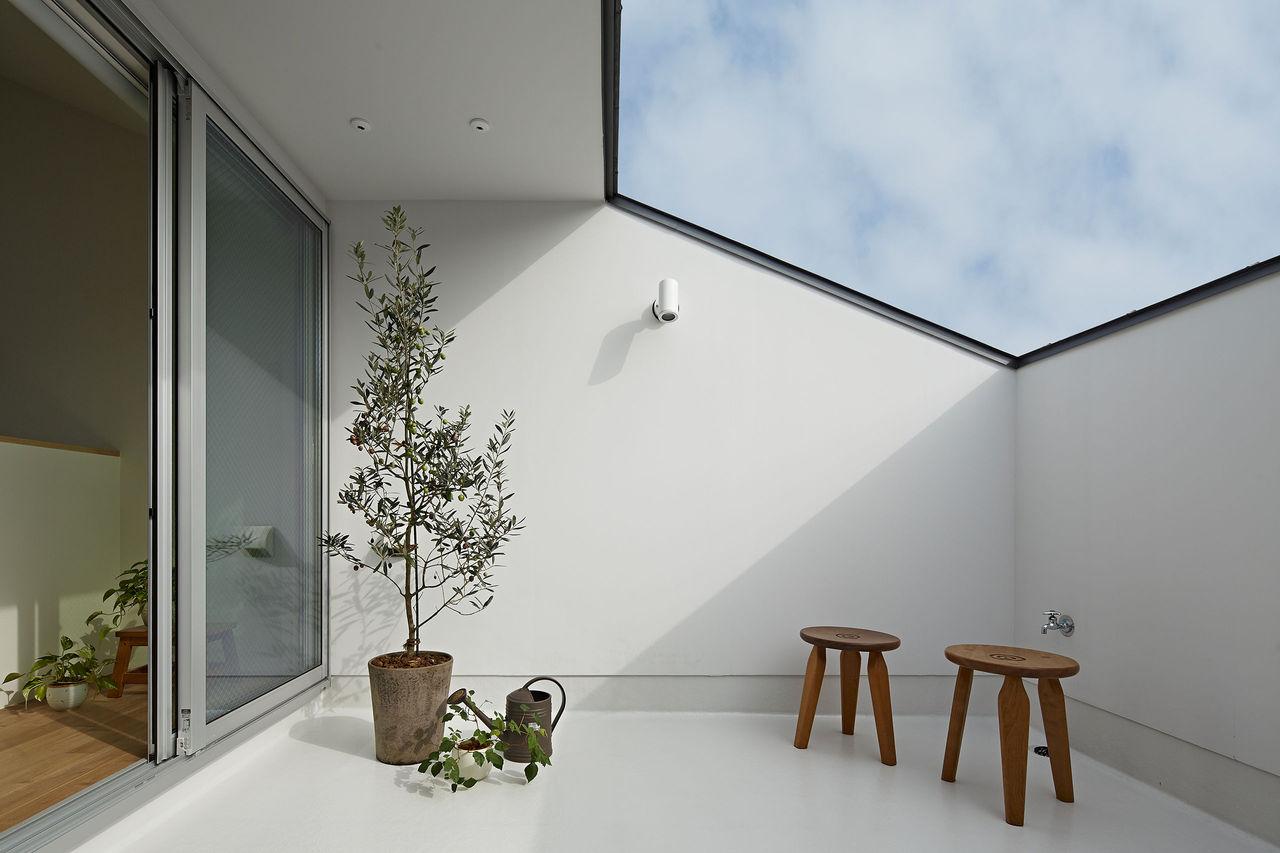 木陰の屋根